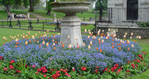 Kensington Gardens, Londra.. Author and Copyright Niccolò di Lalla
