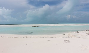 Banchi di sabbia, Sandy Cay, Exumas, Bahamas. Autore e Copyright Marco Ramerini.,