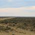 Il paesaggio semi-desertico della Penisola Valdés, Argentina. Autore e Copyright Marco Ramerini