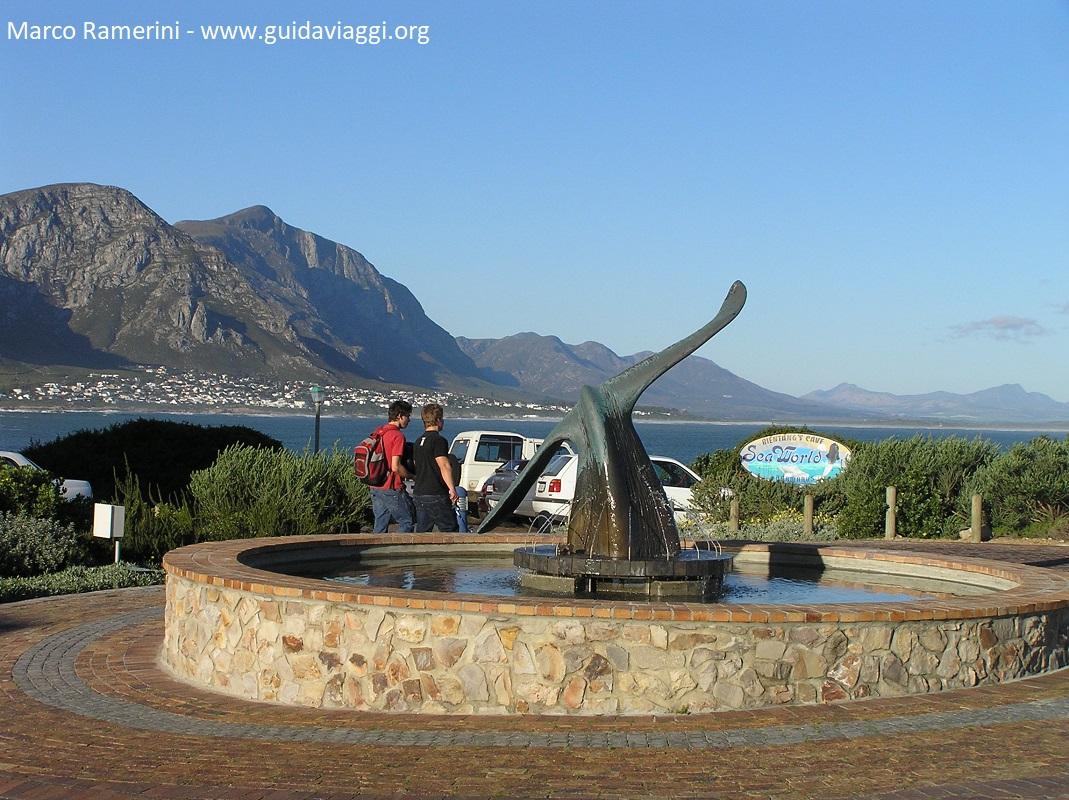 Hermanus, Sudafrica. Autore e Copyright Marco Ramerini