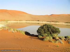 Sossusvlei, Deserto del Namib, Namib-Naukluft, Namibia. Author and Copyright Marco Ramerini
