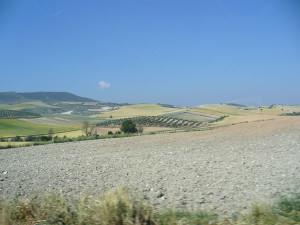 Paesaggio andaluso nei pressi di Guadix, Andalusia, Spagna. Author and Copyright Liliana Ramerini