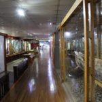 Museo Maggiorino Borgatello, Punta Arenas, Cile. Autore e Copyright Marco Ramerini