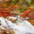 Chorrillo del Salto, El Chalten, Parco Nazionale Los Glaciares, Argentina. Autore e Copyright Marco Ramerini