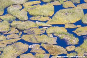 L'interno del cratere del Rano Kau, Isola di Pasqua, Cile. Autore e Copyright Marco Ramerini,.