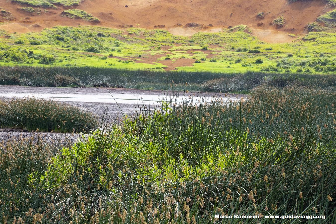 L'interno del cratere del Rano Raraku, Isola di Pasqua, Cile. Autore e Copyright Marco Ramerini..,