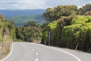 Strada lungo i Catlins, Nuova Zelanda. Autore e Copyright Marco Ramerini