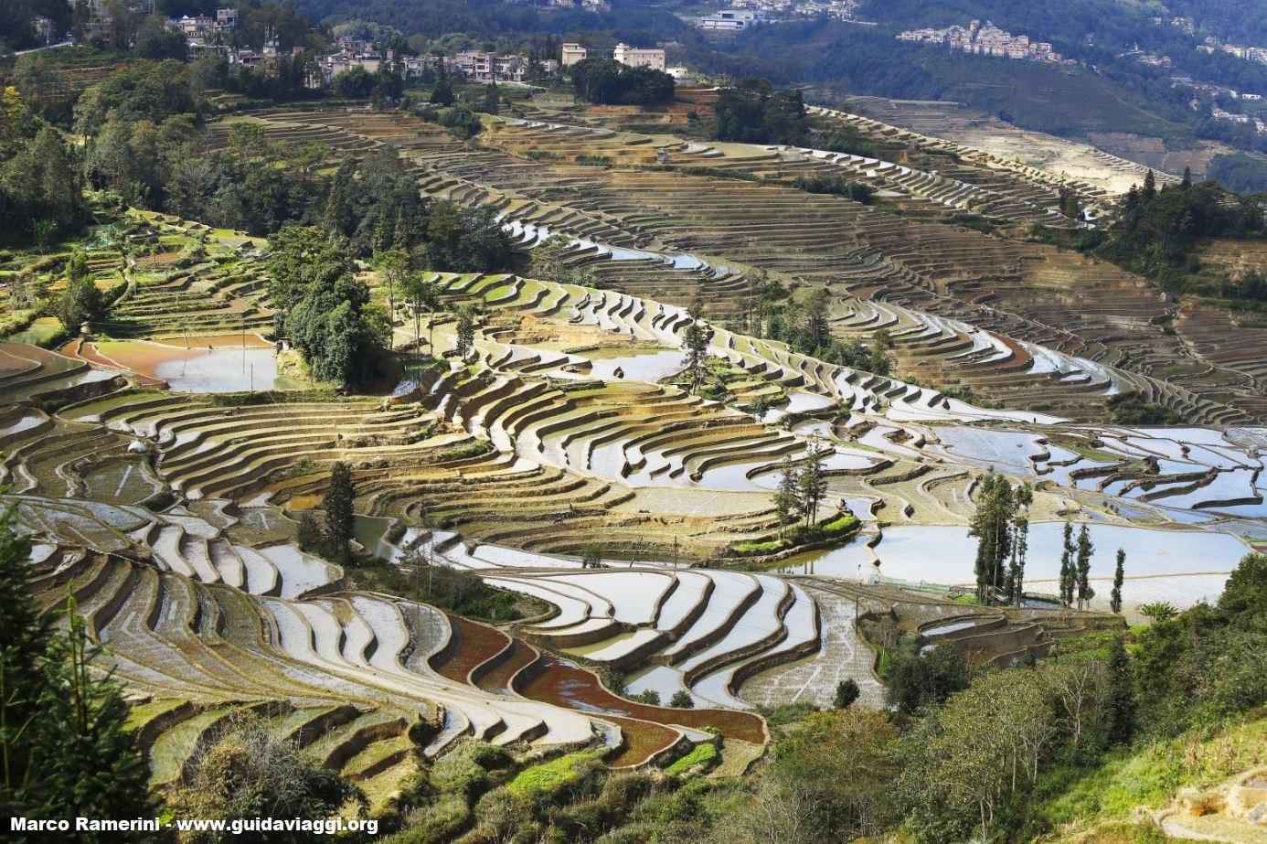 Risaie, Yuanyang, Yunnan, Cina. Autore e Copyright Marco Ramerini