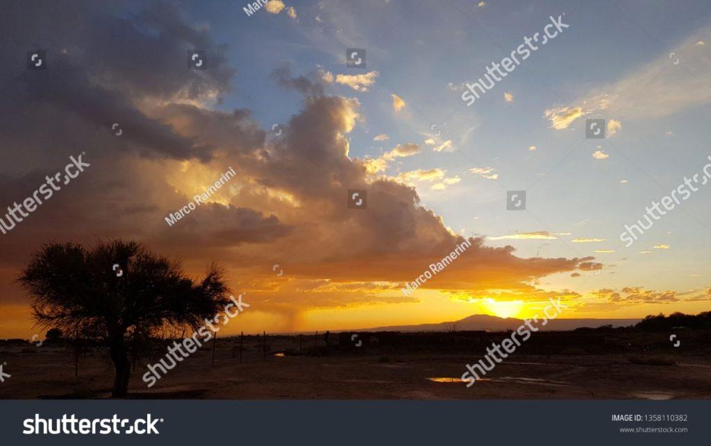 Tramonto con albero solitario e temporale in formazione in lontananza nelle terre aride del deserto di Atacama, Cile. Autore e Copyright Marco Ramerini