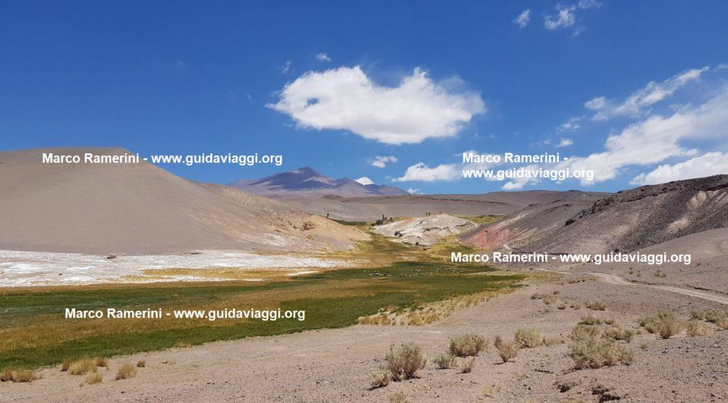 Un'inaspettata oasi verde, Puna, Argentina. Autore e Copyright Marco Ramerini